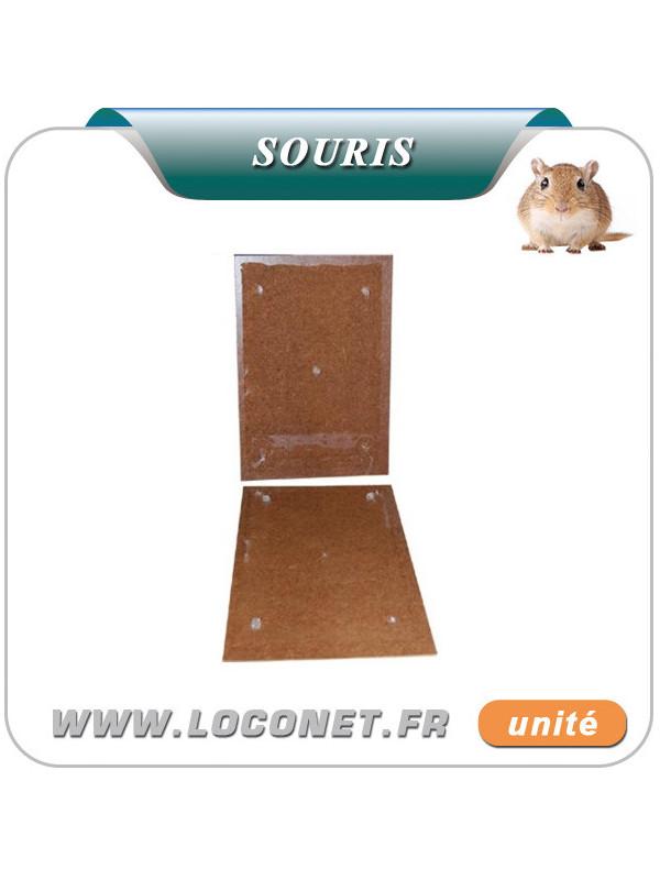 Piège gluant aromatisé pour souris - RATUCLAC