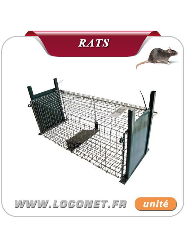 Nasse à rats 1 entrée - MASY