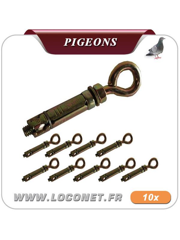 Pitons pour filets anti pigeon