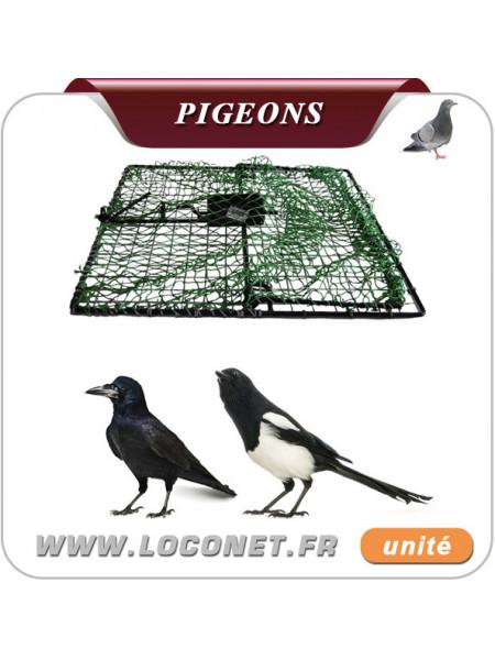 Piège à filets appelants pour pigeons, pies, corbeaux