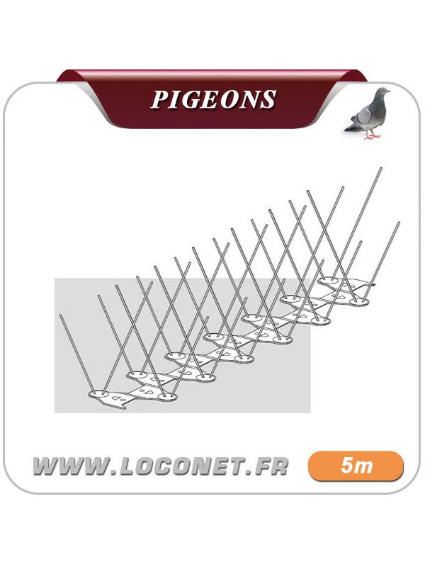 Picot anti pigeon ECOPIC E4 - 5 mètres