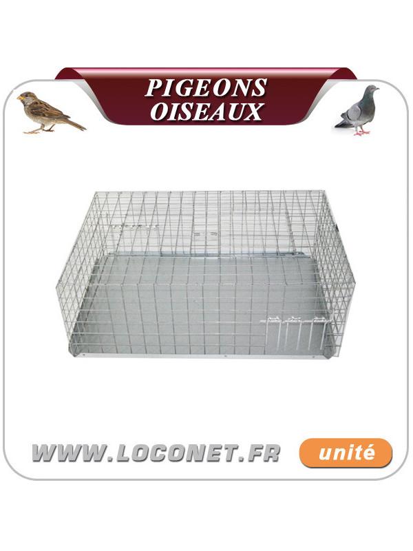 Cage de capture pour pigeons, moineaux et oiseaux - 311
