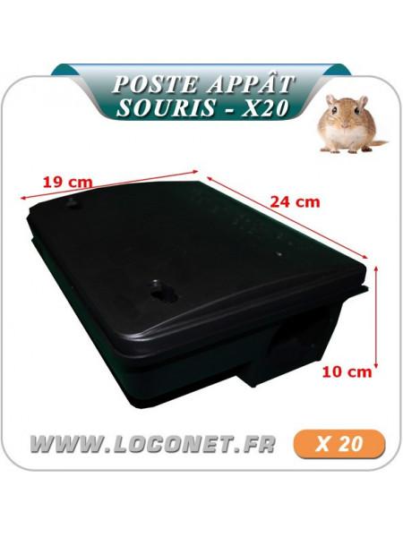 lot de 20 Poste d'appâtage pour attraper les souris BETABOX
