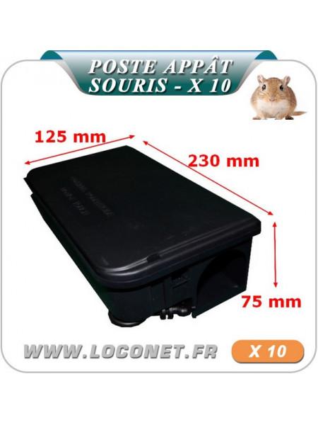 Poste d'appâtage sécurisé pour les souris Coral - LOT DE 10