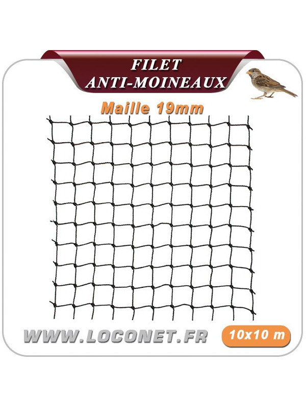 Filet anti moineaux - Coloris noir - 10 * 10 mètres - maille 19 - ECOPIC