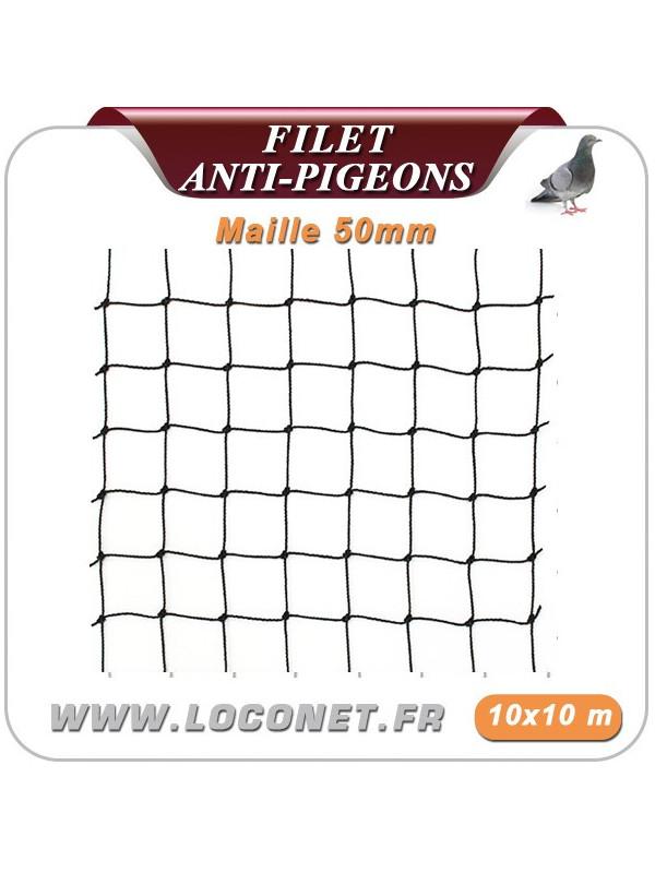 Filet anti pigeon - Coloris noir - 10 x 10 mètre Maille 50 mm - Couleur Noir Pierre  Blanc