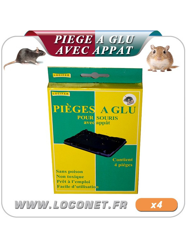 Lot de 4 plaquettes de glue pour rats et souris - GLUE TRAP SOURIS- LUCIFER
