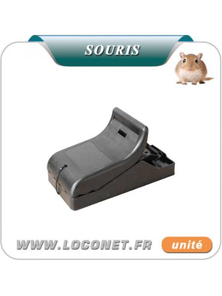 Piège souris efficace pré-appâtée en plastique MASY