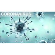 Vente de produits desinfectant virucide contre coronavirus covid19